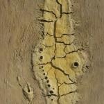 50 - Vulkanlandschaft, 170x125, 2003