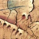 63 - Katalonische Landschaft, 24x32, 2004
