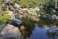 Teichlandschaft